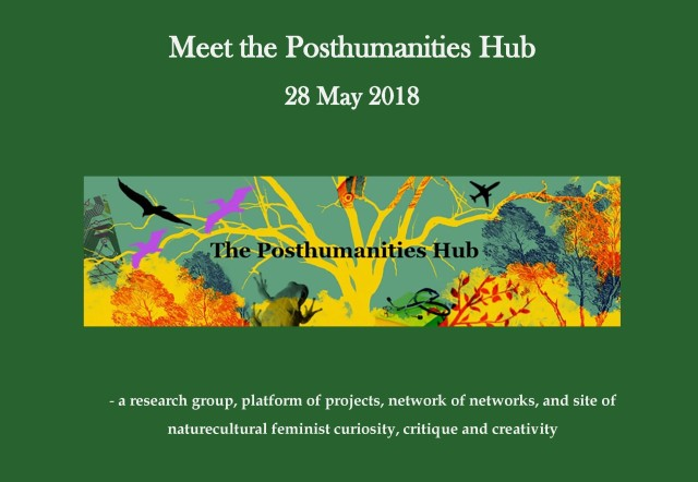 Meet the Posthumanities Hub programme image